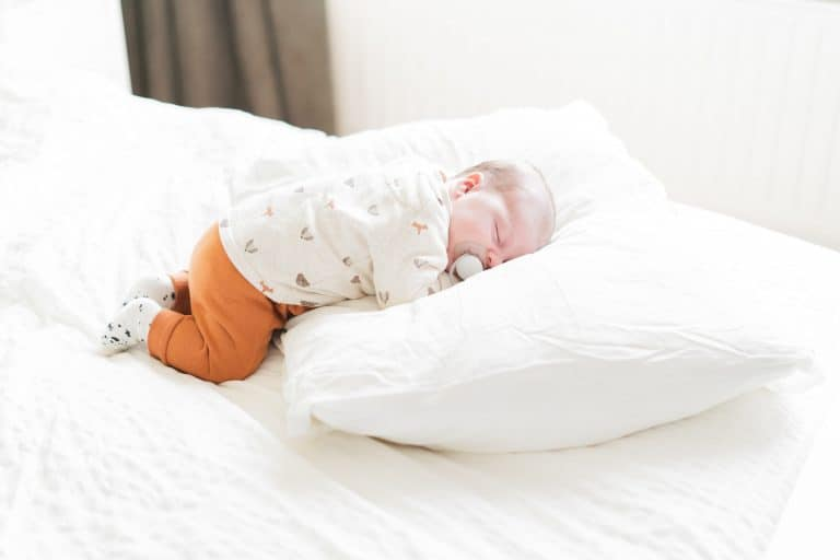 Newbornshoot Zuid Holland